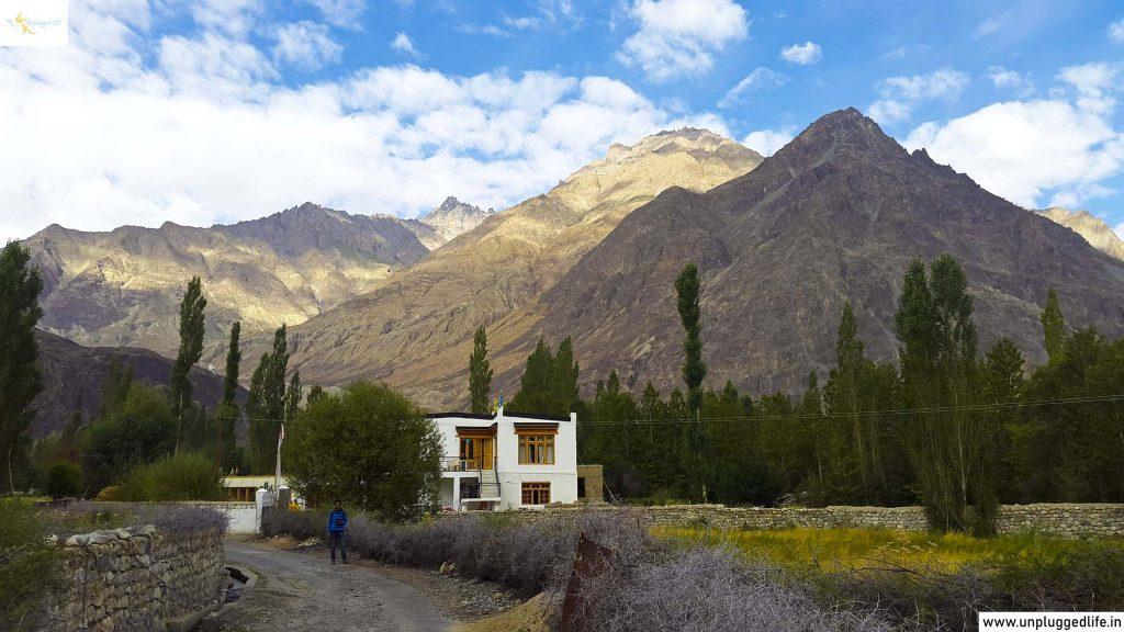 Nubra Valley Desert, Desert in Hunder Nubra Valley, Homestay in Hunder, Homestay in Ladakh, Homestay in Nubra Valley, Unplugged Life, Himalayas, Ladakh, Leh View, View of Ladakh, Mountain View, Leh Ladakh Sightseeing Tour, Leh Ladakh Package, Book Ladakh Trip, Top Places in Ladakh, Sightseeing in Leh-Ladakh, Ladakh View, Leh Ladakh View, Landscape in Ladakh