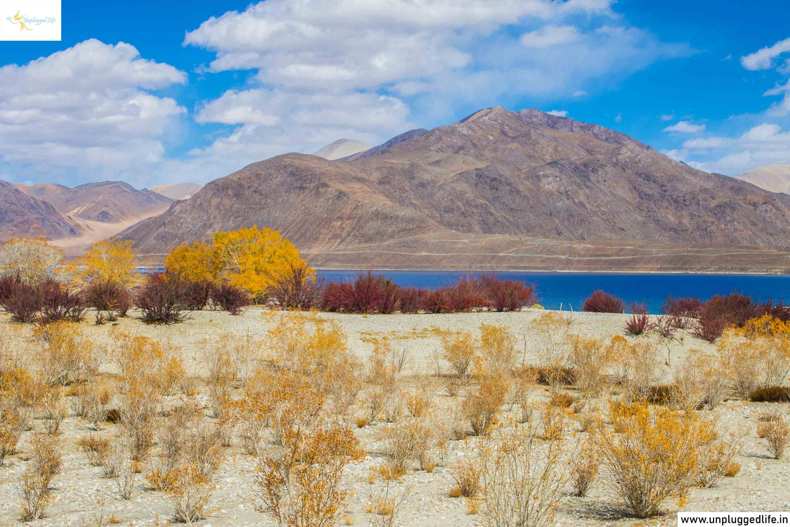Pangong Lake in Autumn, Tso Pangong in Fall, Pangong Lake in Fall, Tso Pangong Lake in Autumn, Ladakh, Unplugged Life, Highest Lakes in India, Highest Lakes in India, high altitude lake, lake, salt water lakes, lakes in Ladakh, Landscape in Ladakh, Landscape, Mountains